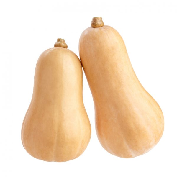 Photo showing butternut