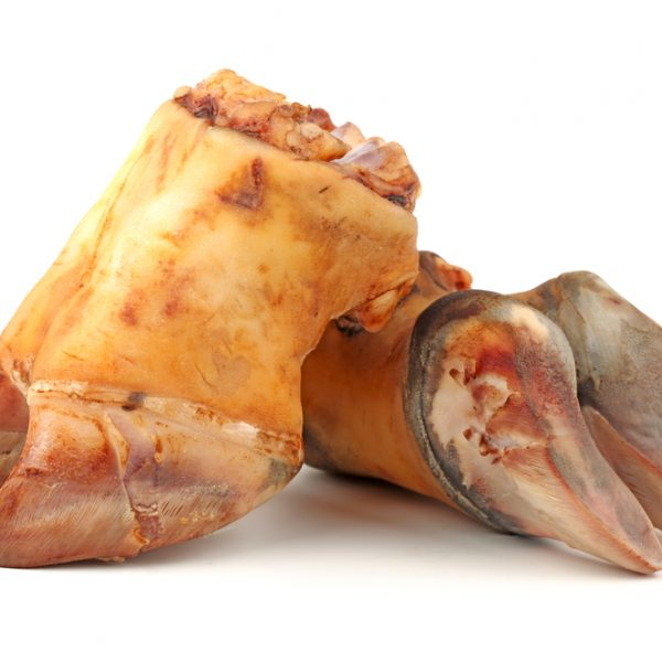 Photo showing cowleg