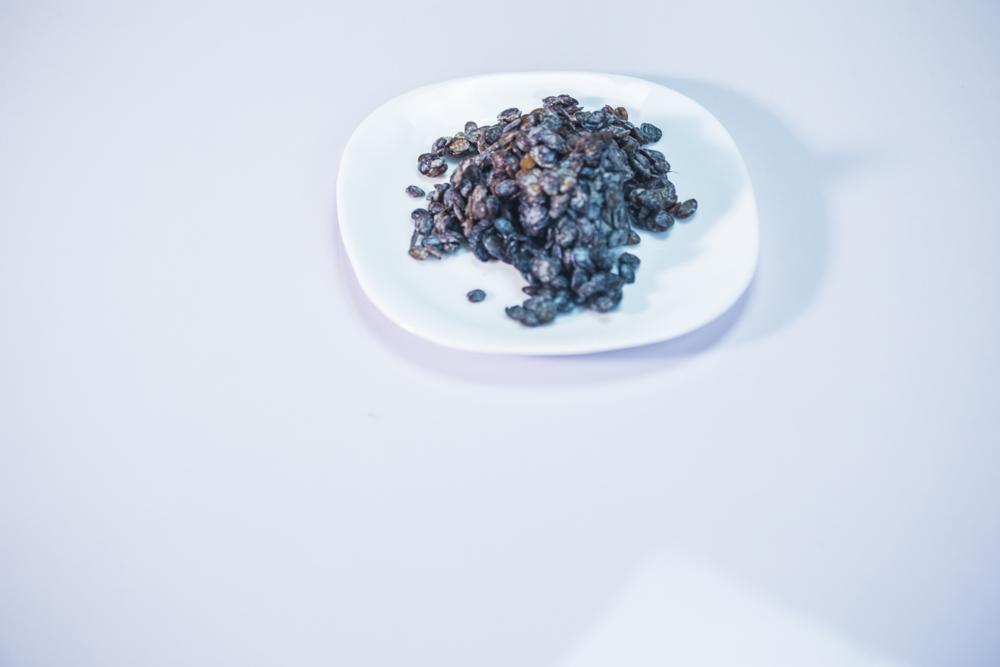 Photo showing locust beans